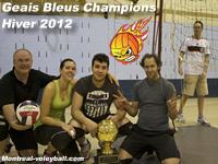 Volley-ball - Association Volley Montréal