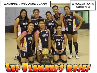 Flamands Roses Champions A automne 2013